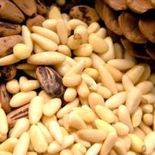 Купить ядро кедрового ореха: интересные факты о любимом продукте