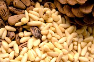 Купить ядро кедрового ореха