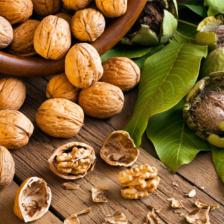 Для чего может понадобиться купить грецкий орех оптом: применение в медицине