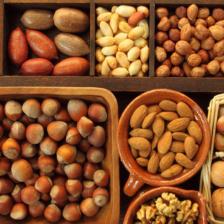 Орехи мелкий опт: как правильно хранить орешки, купленные впрок